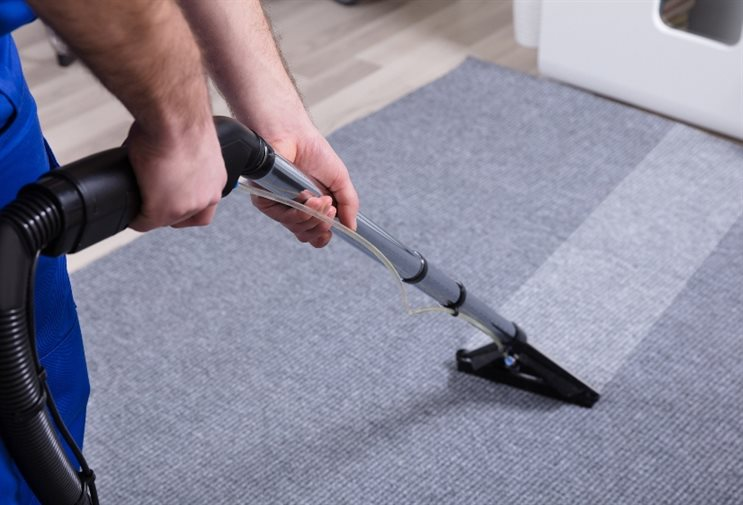 What to Look for in Best Carpet Cleaning Services